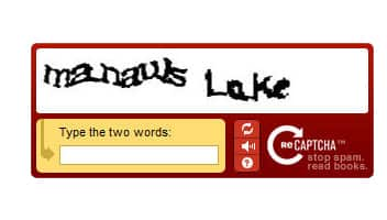 The Standard Word CAPTCHA With An Audio Option