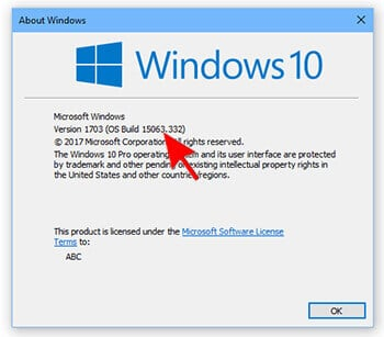 2- Windows 10 Build Number- Automatically Delete Files in Download Folder