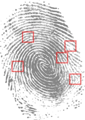 Fingerprint Analysis -Fingerprint Scanners Hindi