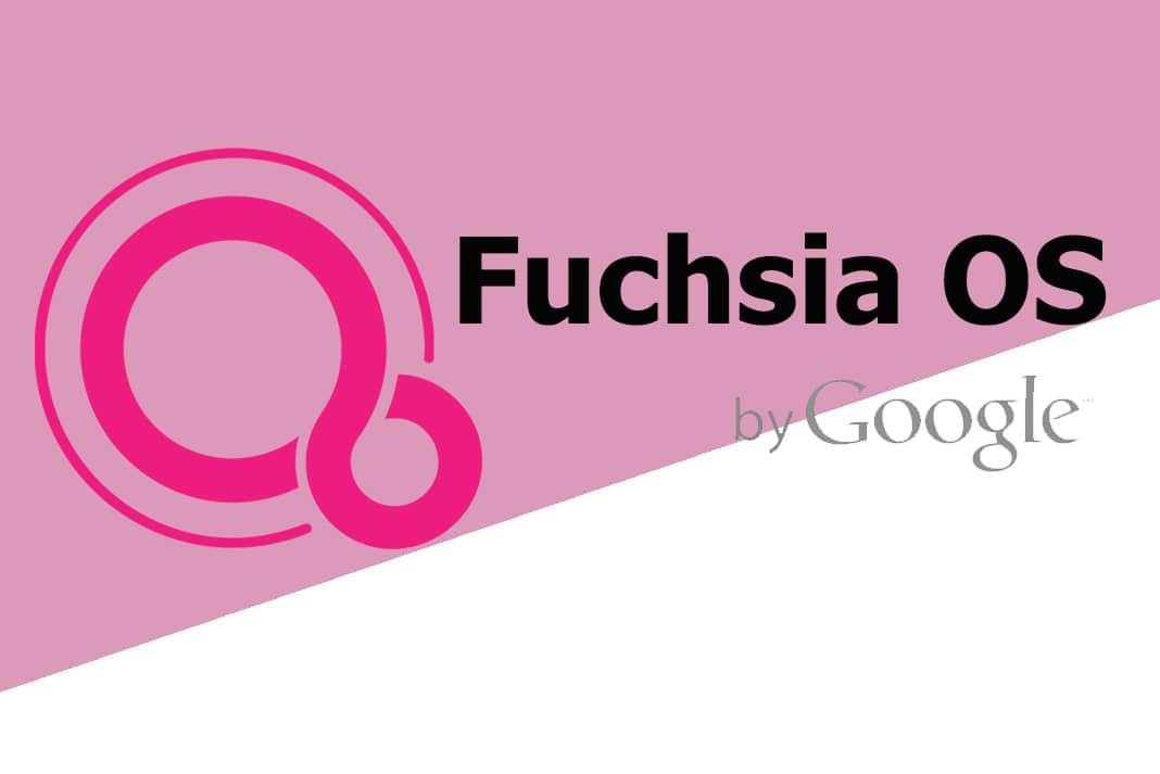 Fuchsia Hindi