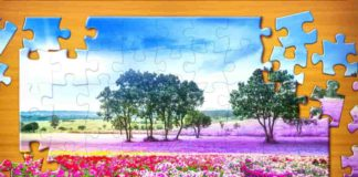 Jigsaw Puzzles in Hindi