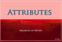Attributes Meaning in Hindi